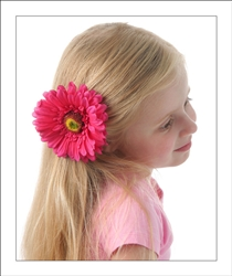 Fuchsia gerber daisy flower hair clip clippy clippies our shocking pink gerber daisy flower hair clips come attached to alligator pinch clips and are a perfect topper for all of her spring and summer outfits mightylinksfo Choice Image